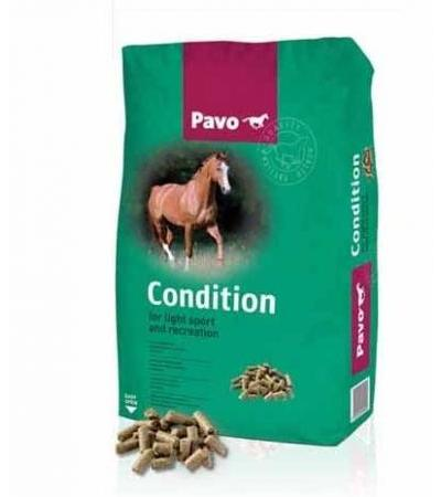 Pavo Pavo Condition Extra